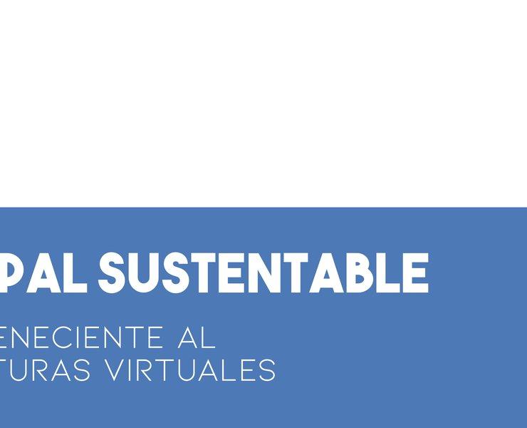 Gestión Municipal Sustentable